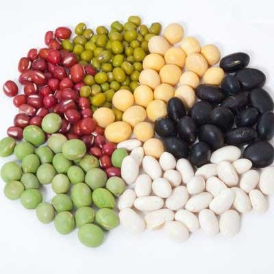 Bean and Pulse  Sorting
